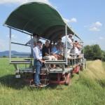 Nachtrag:  grosses Interesse am Uria-Projekt und der Uria-Herde :