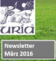 URIA-Rinderherde im Fernsehen, Dienstag, 22.03.2016 / 18:15 Uhr