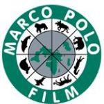 Uria-Rinder in Showreel von Marco Polo Film AG Heidelberg