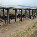 Exkursion der Freien Landbau Schule Bodensee zum Uria-Projekt, Sonntag, 7. April 2019
