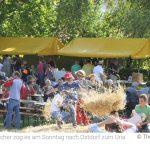 Petrus liebt Kühe: Unzählige Besucher strömen zum Uria-Hoffest nach Ostdorf