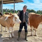 Rinderflüsterer führt seinen Kampf weiter